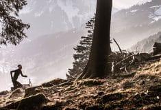 Image de l'article Compressport : gamme de produits automne/hiver 2019