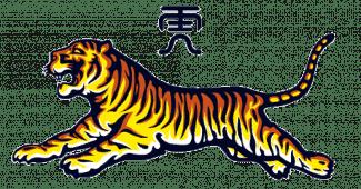 Image de l'article Découvrez les caractéristiques du baume du Tigre!