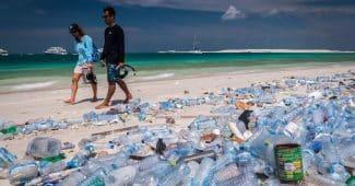 Image de l'article adidas x Parley : 5 ans de partenariat contre la crise du plastique