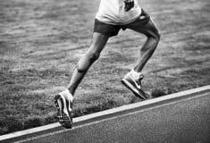 Image de l'article L'histoire de la Pegasus de Nike : 37 ans d'innovation!