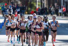 Image de l'article Retour sur les performances du Marathon Project 2020