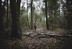 Image de l'article Xavier Thévenard chez On Running!
