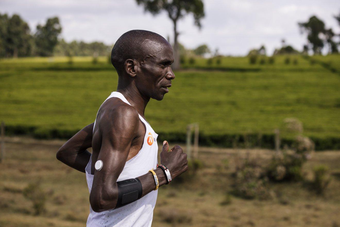 nn running team abbott running