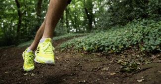 Image de l'article adidas Rental Pilot – Test et avis sur le programme de location d'équipements outdoor